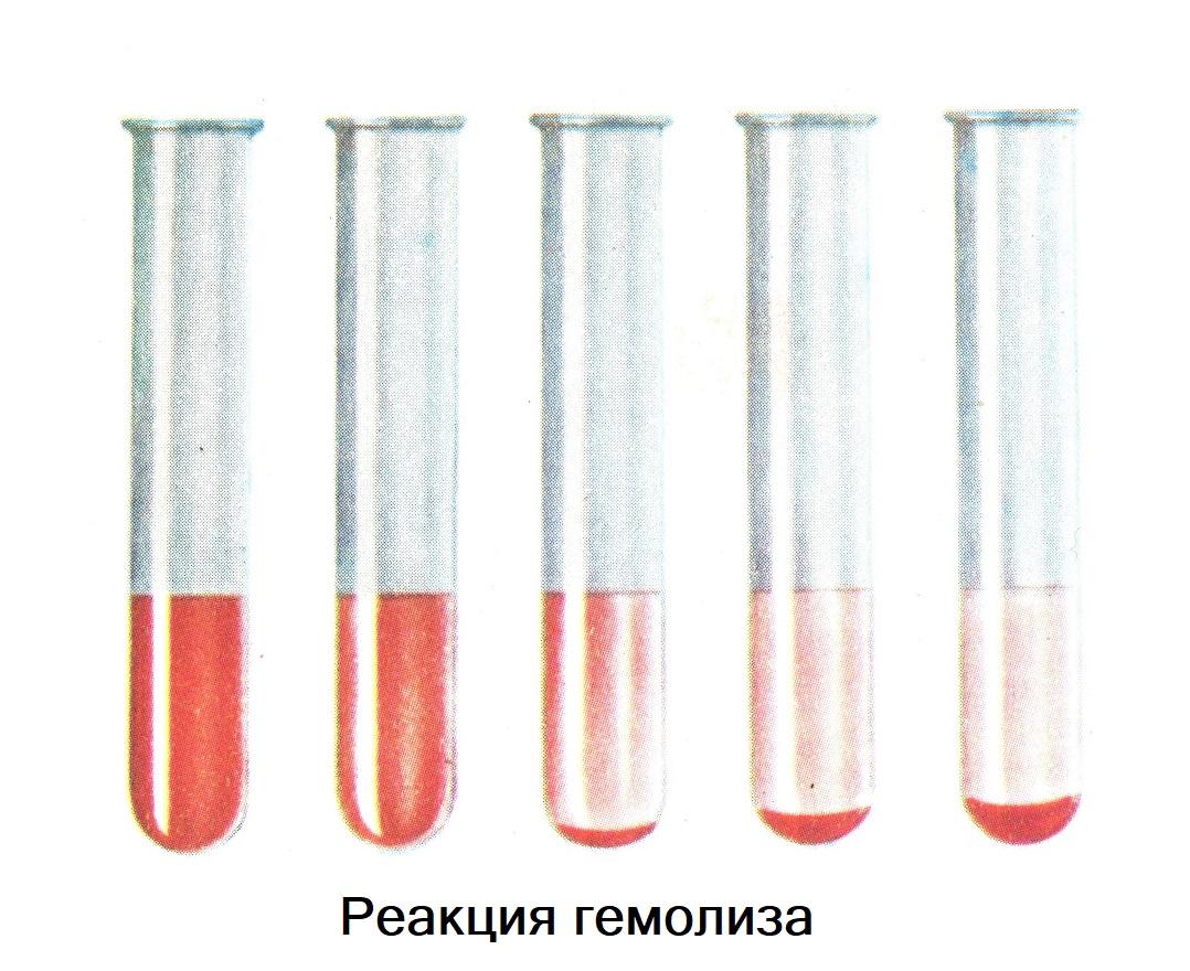Реакция гемолиз