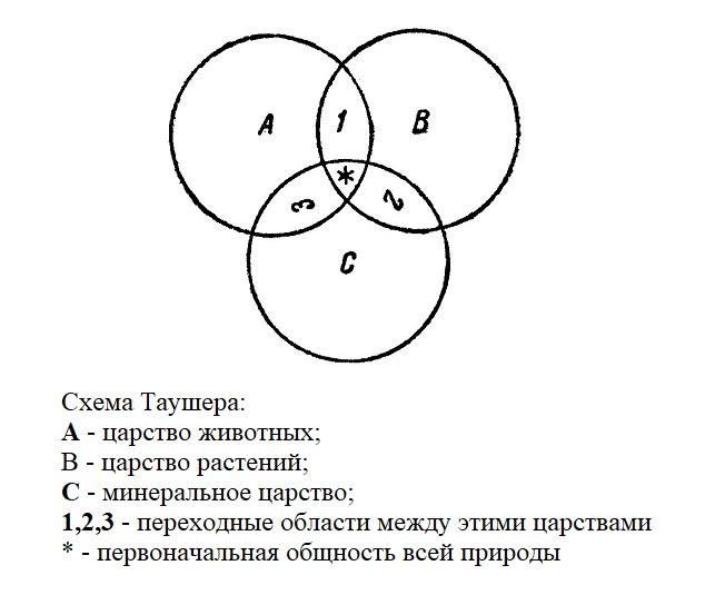 Схема Таушера